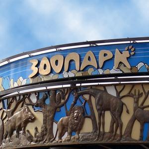 Зоопарки Заречья